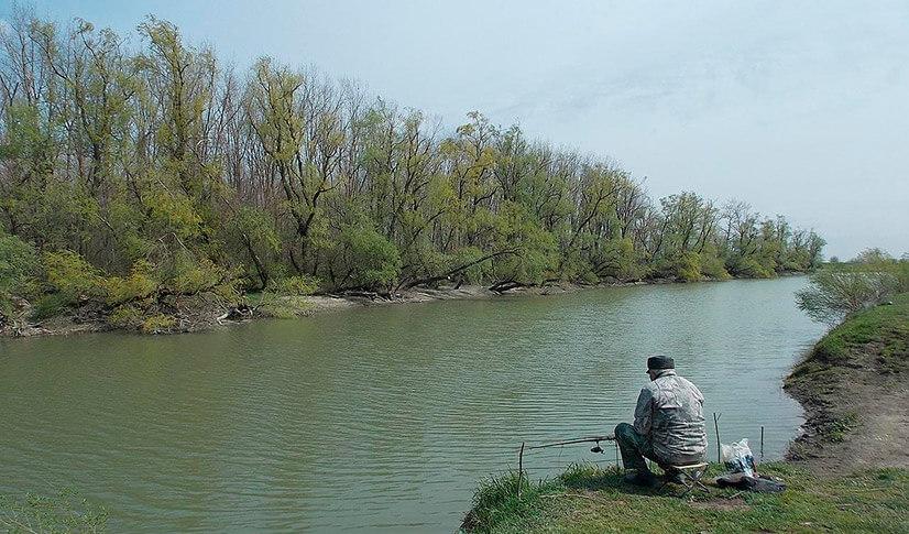 Бесплатная рыбалка на Кубани
