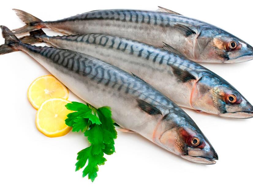 Эксперты: не всякая рыба полезна для здоровья