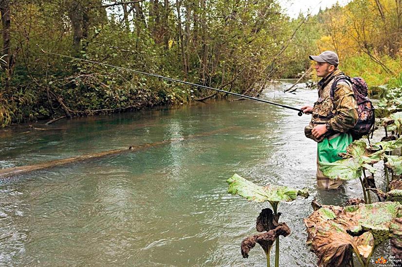 Где порыбачить в Омской области?
