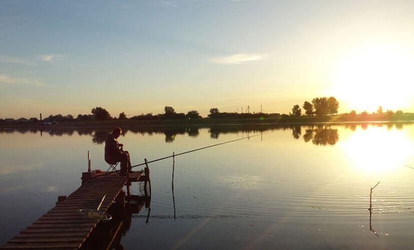 Рыбачим на Волге: места, снасти, особенности лова