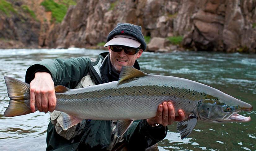 Красная рыба: названия, виды и рыбалка