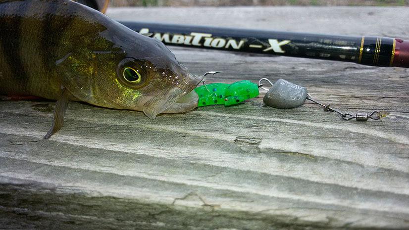 Zetrix Ambition X: особенности спиннингов и отзывы рыболовов