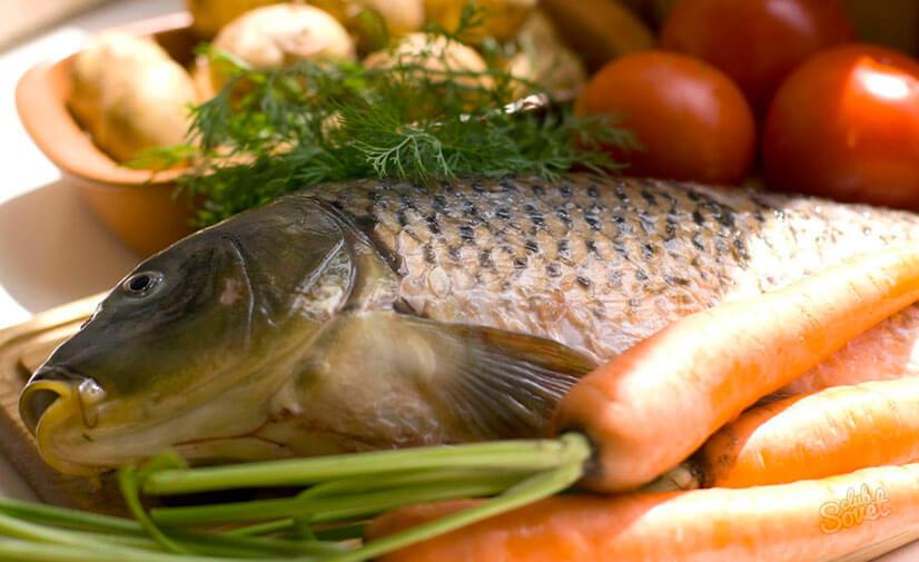 Вкусные рецепты сазана в духовке