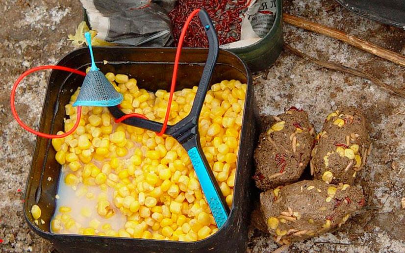 Как правильно сварить кукурузу для рыбалки?