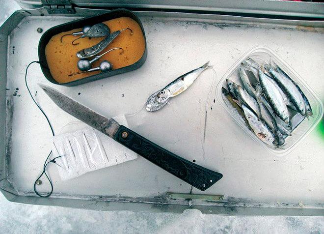 Как подобрать снасти для ловли судака?