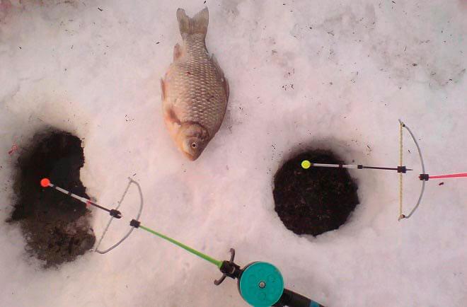 Рыбалка с кивком арбалет