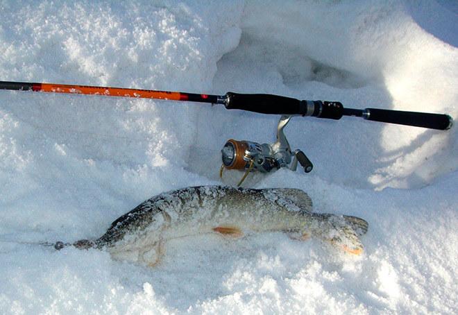 Как выбрать спиннинги Айко по типу ловли?