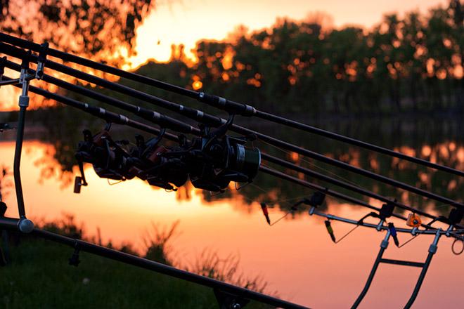 Какое удилище выбрать для летней рыбалки?